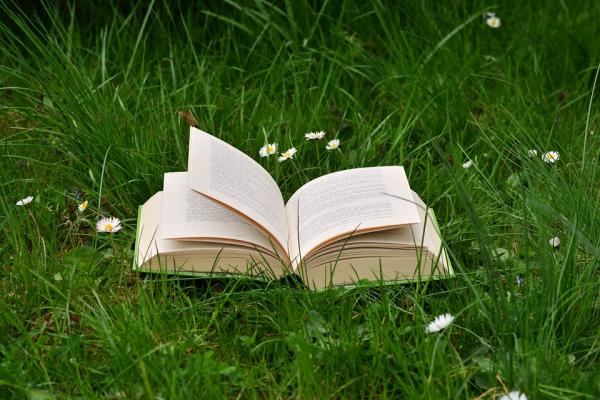 book-2224934_960_720