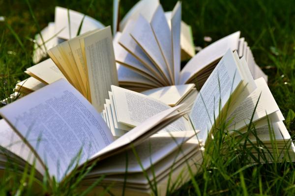 books-2241631_960_720