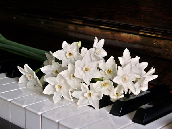 piano-1398069_960_720