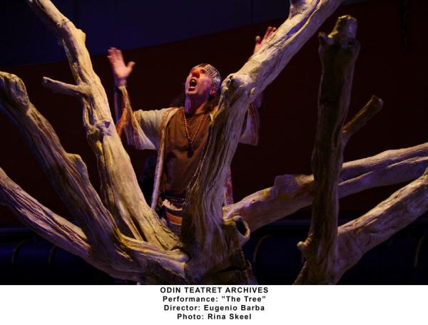 The_Tree-RinaSkeel-IMG_5731