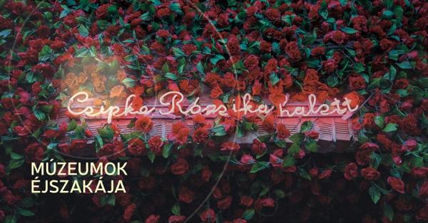 Csipke_Rozsika