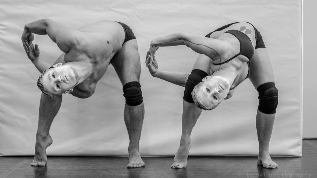 Infinite Dance tánc- és összművészeti fesztivál